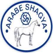 SHAGYA.info.hu - A Shagya lovak otthona
